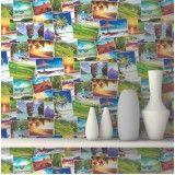 Papel para paredes onde fazer no Jardim São Paulo